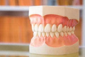 Meridian Tooth Chart Dentistry